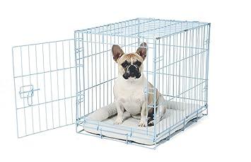 Carlson Azul Seguro y Compacto Sola Puerta Metal Caja de Perro, pequeño: Amazon.es: Productos para mascotas