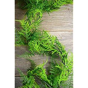 6 Ft Artifical Asparagus Fern Garland - Excellent Home Decor - Indoor & Outdoor 3