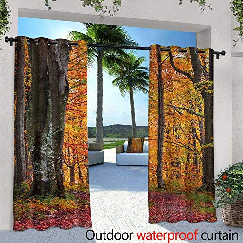 Tim1Beve Indoor/Outdoor Curtains Autumn Fall Forest with Shady Deciduous Trees and Faded Leaf Magic Woodland Picture for Patio/Front Porch 84