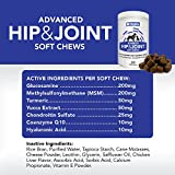 -Glucosamine-Chondroitin-for-Dogs-250-Training-Size-Dog-Treats-Daily-Chewable-Dog-Glucosamine-with-Tumeric-MSM-Hip-and-Joint-Soft-Chews-250-ct-2-Month-Supply-All-Breeds-and-Sizes-USA