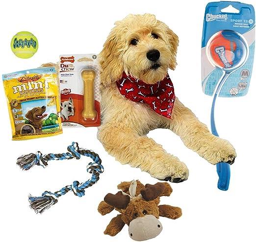 Deluxe perro perro de juguete Set de regalo: perro y cachorro caja ...