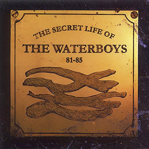 The Secret Life of The Waterboys ()