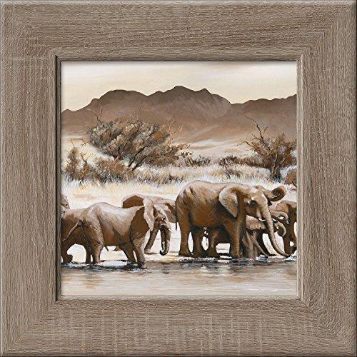 Pro-Art New Classic Wood cp305o17 Wall Mural Tembe Elephant Park III 44 x 44 cm