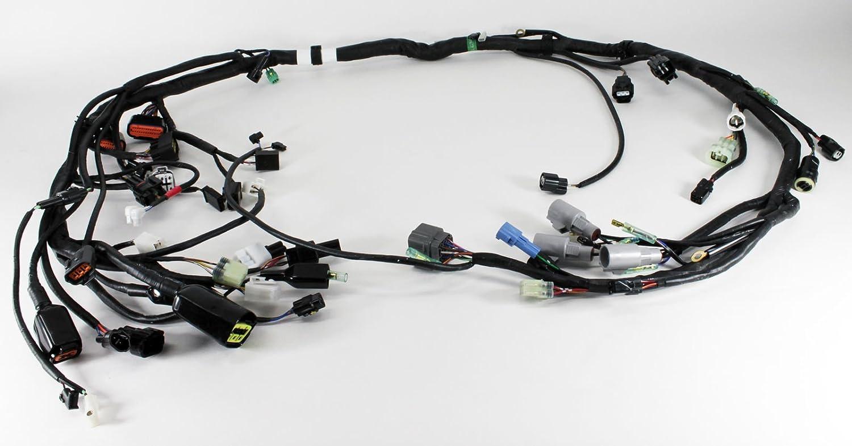 Kawasaki Bayou Wiring Harness