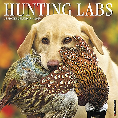 (Hunting Labs 2019 Wall Calendar (Dog Breed Calendar))