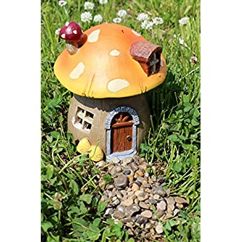 Amazon.com : Top Collection Miniature Fairy Garden and Terrarium ...
