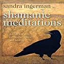 Shamanic Meditations: Guided Journeys for Insight, Visions, and Healing Rede von Sandra Ingerman Gesprochen von: Sandra Ingerman