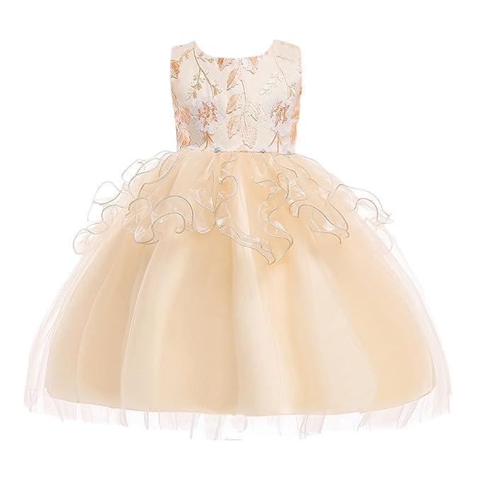 Zhhlaixing 3-8 años de Edad Chicas Elegante Vestido de Novia de Dama de Honor