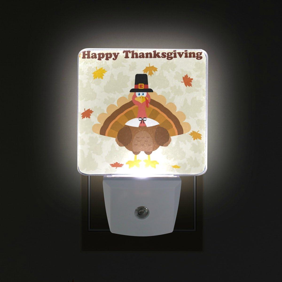 Details about  /Thanksgiving Turkey Sunset Decorative Night Light