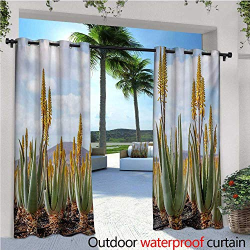 Plant Outdoor Privacy Curtain for Pergola Photo from Aloe Vera Plantation Medicinal Leaves Remedy Fuerteventura Canary Islands Thermal Insulated Water Repellent Drape for Balcony W108 x L84 Multico