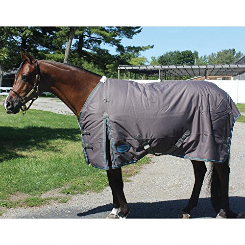 (Country Pride Klondike 600D Ripstop Heavyweight Turnout Blanket)