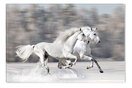 Amazon.com: Startonight Canvas Wall Art Horses running fast, Horses ...