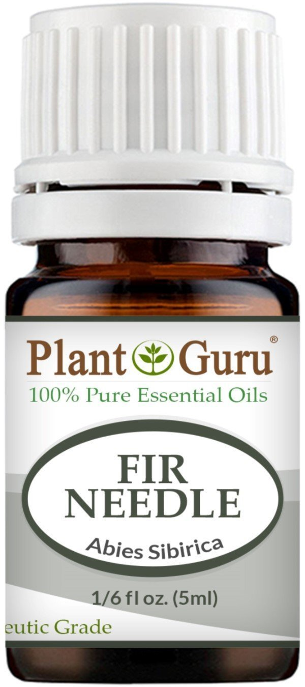 Fir Needle Essential Oil. 5 ml. 100% Pure, Undiluted, Therapeutic Grade. Sample Size by Plant Guru B011M7FLPS