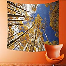 Nalahomeqq Forest Home Decor Custom tapestry by Tall Aspen Trees to Clouds in Fall Regional Sun Burst Wilderness Print Fabric drawing room Decor Extra Orange Blue 40 W x 60 L INCH