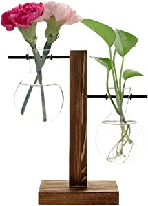 Feitore Glass Planter Bulb Vase, Desktop Plant Terrarium with Retro Solid Wooden Stand and Metal Swivel Holder for Hydroponics Plants Home Garden Office Wedding Decor - (2 Bulb Vase)