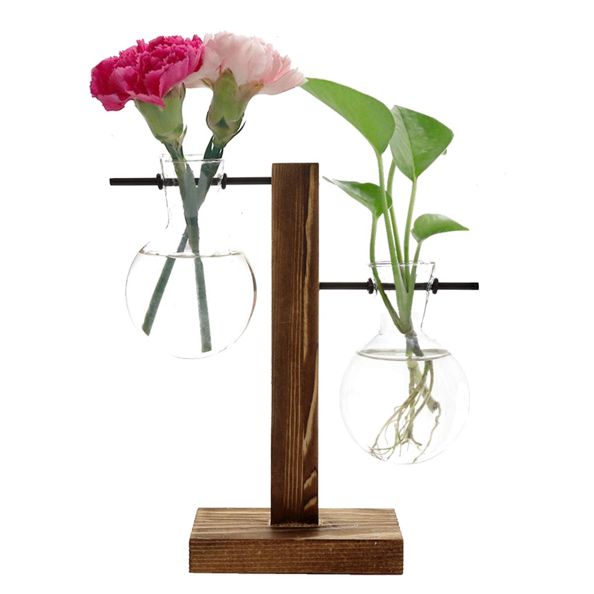Feitore Glass Planter Bulb Vase, Desktop Plant Terrarium with Retro Solid Wooden Stand and Metal Swivel Holder for Hydroponics Plants Home Garden Office Wedding Decor – 2 Bulb Vase