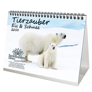 Animales mágica polartiere · DIN A5 · Premium/mesa ...