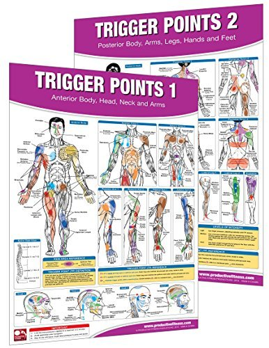 By Becky Swan Trigger Point Therapy Chart/Poster Set (First) [Map] (Trigger Point Therapy Chart)