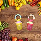 Baby Fresh Food Feeder Pacifier(2 Sets) - SILIVO