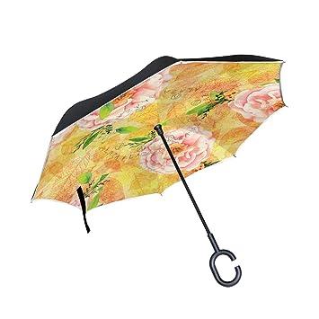 ISAOA - Paraguas Plegable de Doble Capa (protección UV, Resistente al Viento, para