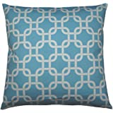 JinStyles Trellis Chain Cotton Canvas Decorative Throw Pillow Cover (White and Carolina Blue, 18 x 18)