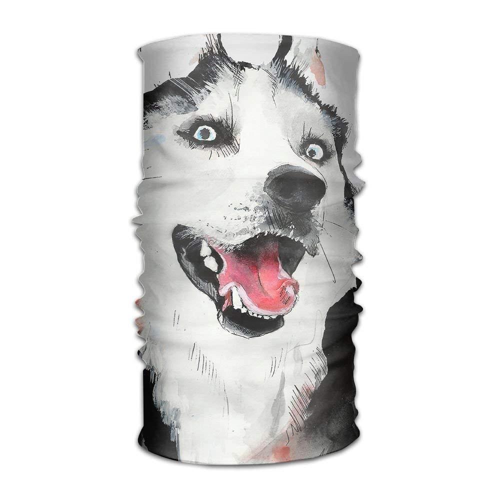 Husky Dog Diseño creativo Amantes del arte DIY Impreso Diadema ...