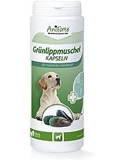 AniForte Grünlippmuschel-Kapseln 300 Stück für Hunde - reicht für 300 Tage max. | Gelenk-Tabletten, Reines Grünlippmuschel-Extrakt Perna Canaliculus, Grünlippenmuschel