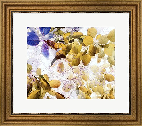 Great Art Now Alchemy by Anne Dillon Art Framed Art Print Wall Picture, Wide Gold Frame, 22 x 20 inches
