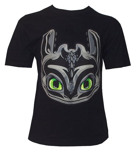 Camiseta para Niño con Diseño de DreamWorks Cómo Entrenar a tu Dragón, Cabeza de Desdentado, Negro: Amazon.es: Ropa y accesorios