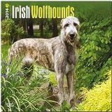 Irish Wolfhounds Calendar (Multilingual Edition)