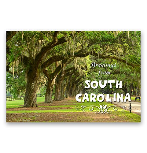 (GREETINGS FROM SOUTH CAROLINA postcard set of 20 identical postcards. SC post cards. Made in)