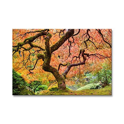 (Maple Tree 12