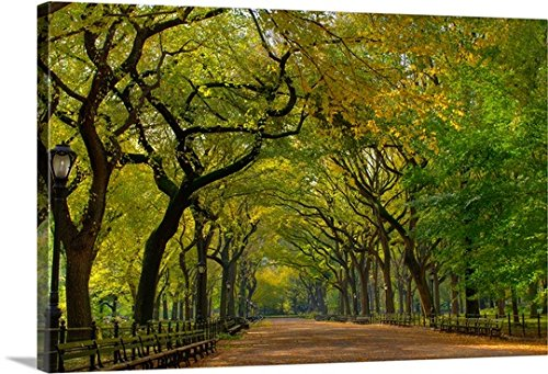 Gallery-Wrapped Canvas entitled The Mall in New York City's Central Park during summer by Great BIG Canvas - America Mall New Of City York