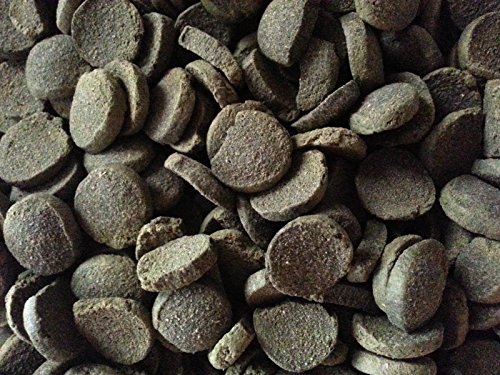 Monthly Supply of Algae Wafers Invertebrate Food for Live Shrimp, Hermit Crabs, Snails, Dwarf Crayfish and Full Sized Crayfish. Sinking Fish Spirulina Wafers over 35% Crude Protein also for Freshwater and Tropical Fish like Catfish, Plecos, Cories, and other Bottom Grazers (1 Month Supply)