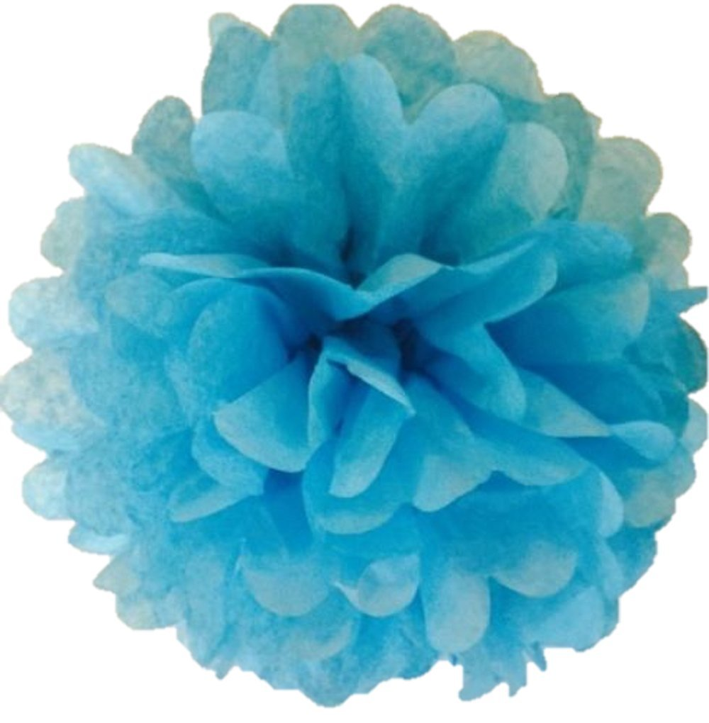 Matissa Pack von 10 Seidenpapier Pom Poms Blumenbälle Handmade Hochzeit Dekoration erhältlich in 12(30 cm) und 14 (35 cm) (12(30 cm), Orange) Matissa ltd
