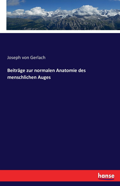 Beitrage Zur Normalen Anatomie Des Menschlichen Auges (German ...