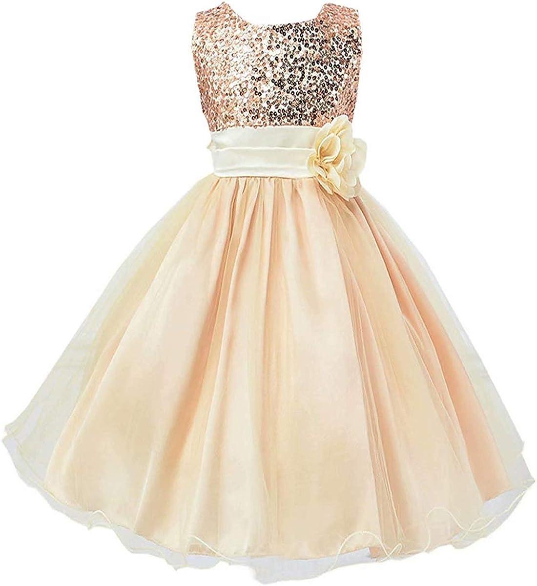 Girls Flower Lace Princess Dress Wedding Pageant Formal Dress 3-12 Years