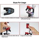 GGIENRUI Science Kits for Kids Microscope