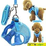 Wiz BBQT Soft Adjustable Mesh Dog Puppy Cat Pet Vest Harness and Leash Set for Dogs Cats Pets (B, Blue)
