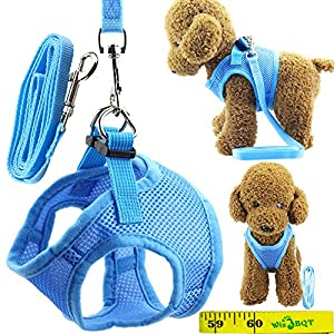Soft Adjustable Mesh Dog Puppy Cat Pet Vest Harness and Leash Set for Dogs Cats Pets