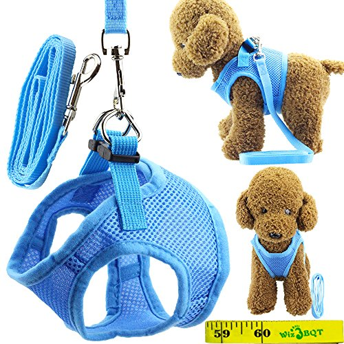 Soft Adjustable Mesh Dog Puppy Cat Pet Vest Harness and Leash Set for Dogs Cats Pets (A, Blue)