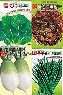 Korean 4 Vegetable Herb Seed Set, Korean Green Lettuce, Korean Red Lettuce, Autumn Radish for Kimchi, Chives, Farming Garden