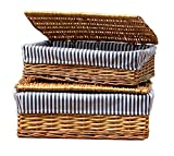 Vintiquewise TM Lined Storage Baskets with Lid (Set of 2)