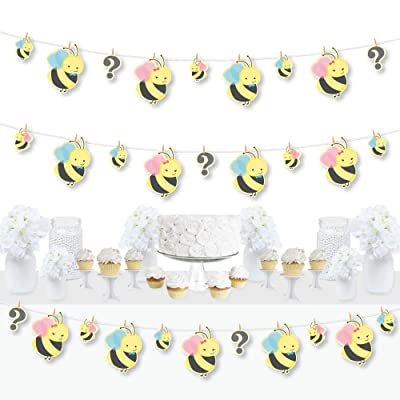 Big Dot of Happiness What Will it Bee - Gender Reveal DIY Decorations - Clothespin Garland Banner - 44 Pieces: Toys & Games