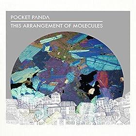 Pocket Panda: This Arrangement of Molecules