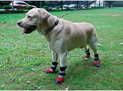 #3, Plaid KEESIN Pet Dog Puppy Waterproof Nonslip Sports Socks Shoes Boots Paw Protector for Small//Medium//Large Pet Dog 4 PCS Rubber Sole