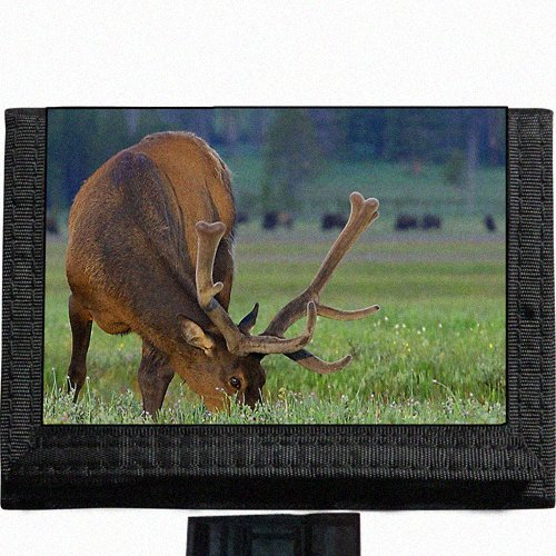 Deer scenic photo Black TriFold Nylon Wallet Great Gift Idea (Photos Scenic)