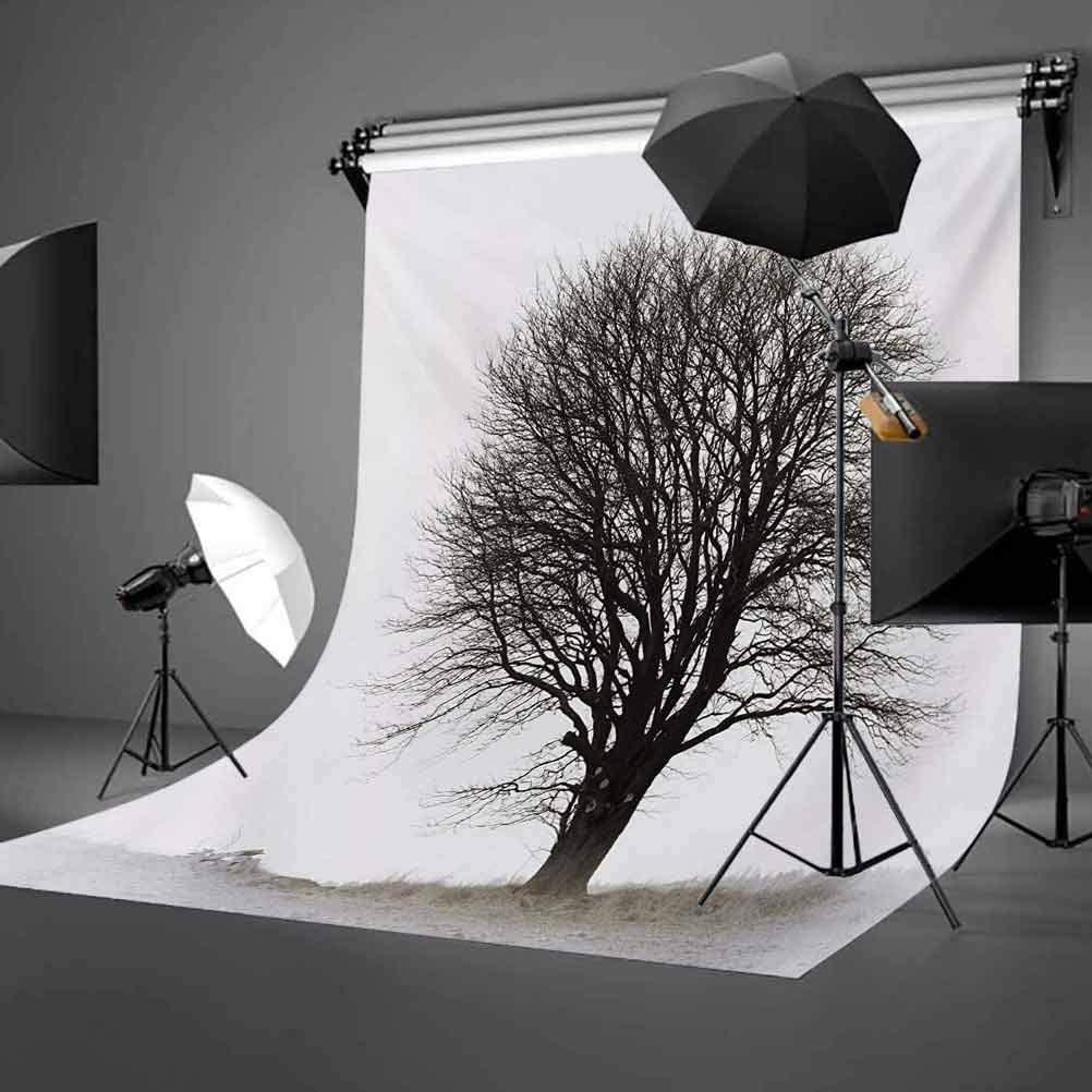 8x10 FT Photography Backdrop Old Ancient Empty Dark City Streets Avenues with Homes Photograph Civilization Background for Kid Baby Boy Girl Artistic Portrait Photo Shoot Studio Props Video Drape