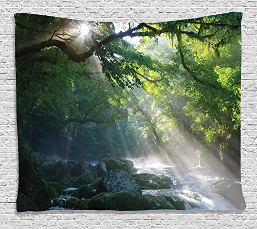 (Ambesonne Rainforest Tapestry Wall Hanging, Tropical Rain Stream in the Jungle Stones under Shadows of Trees Sunlight Mother Earth Theme, Bedroom Living Room Dorm Decor, 80 W X 60 L,)