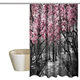 Pink Double Swag Shower Curtain NYC Decor Collection Home Decor Shower Curtain Blossoms in Central Park Cherry Bloom Trees Forest Spring Springtime Landscape Picture Custom Shower Curtain W36 x L72 Pink Gray